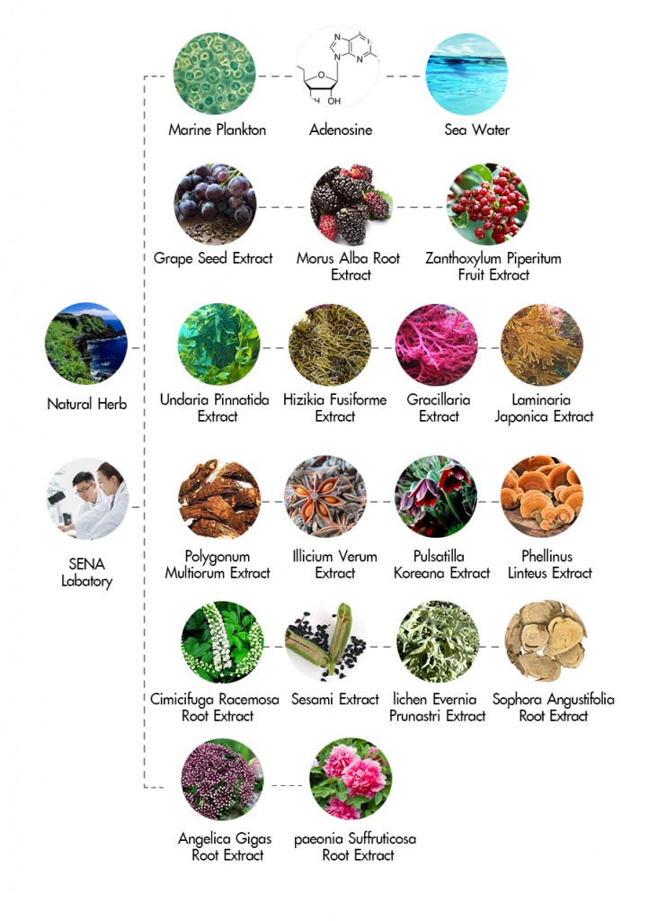 น้ำแพลงค์ตอน, biotrerm, BIOTHERM LIFE PLANKTON ESSENCE, sena, Sena Marine Plankton, plankton, beauty blogger, men's grooming, blogger, บิวตี้บล็อกเกอร์, บล็อกเกอร์ผู้ชาย, รีวิว, พันทิป, pantip, review