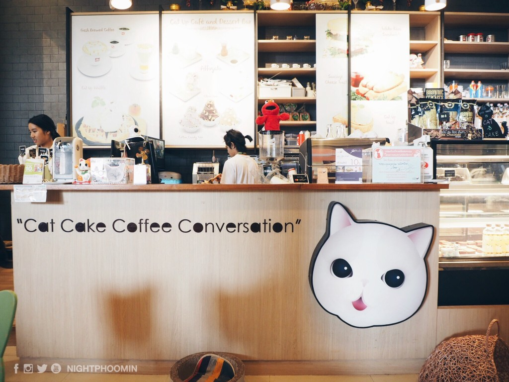 cat up cafe 7