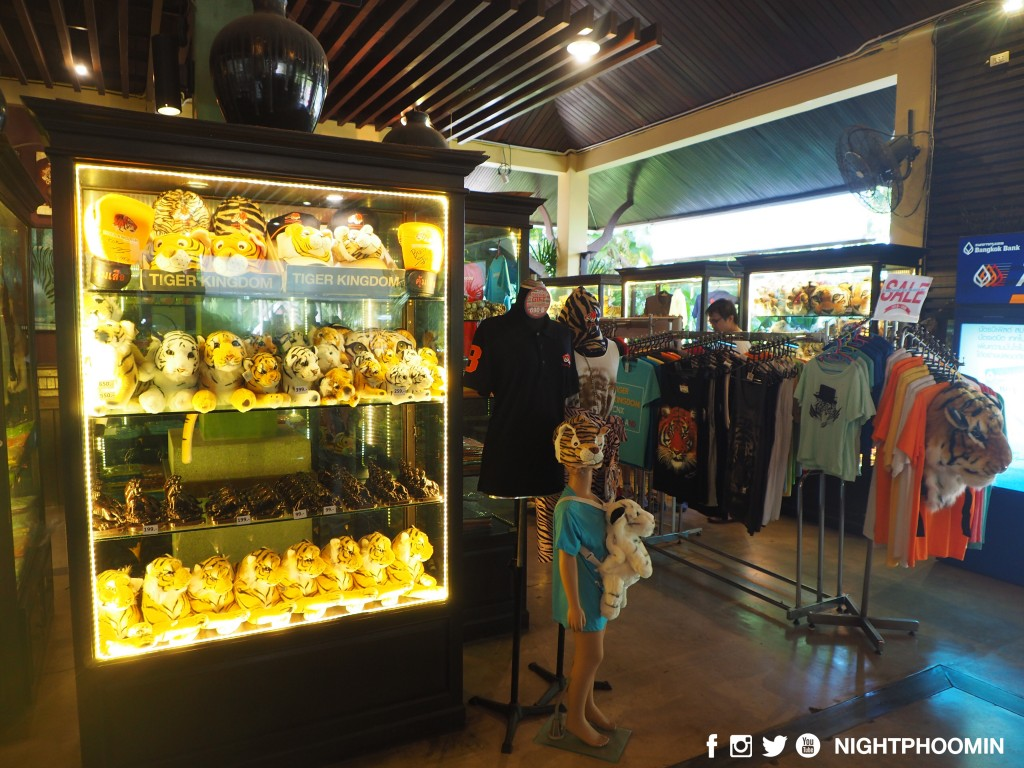 tiger kingdom chiang mai thailand คุ้มเสือ13