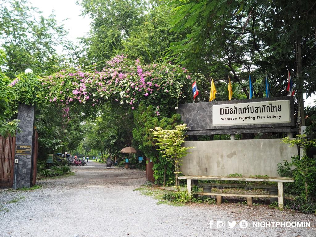 bangkrachao-bangkok-11