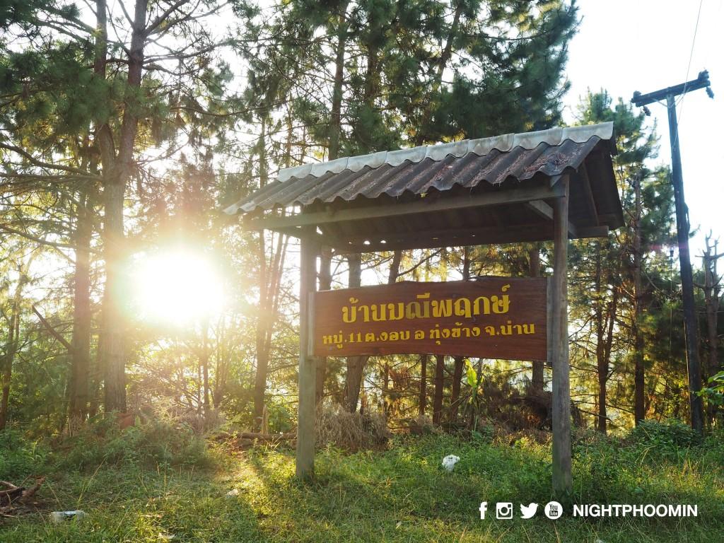 nan-thailand-ban-manee-pruek-doi-pha-phung-3
