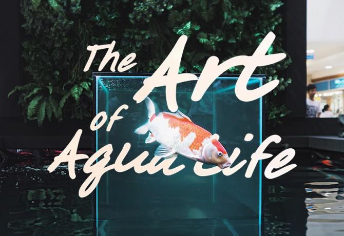 art-of-aqua-coverweb